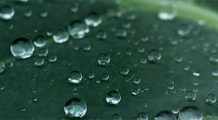 bucket-rainwater